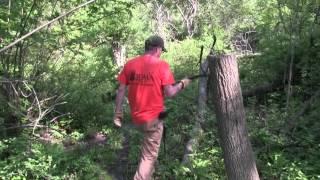 جولة في رجل قدم الغزلان الفراش المنطقة التي تم إنشاؤها بواسطة المفصلي قطع الأشجار
