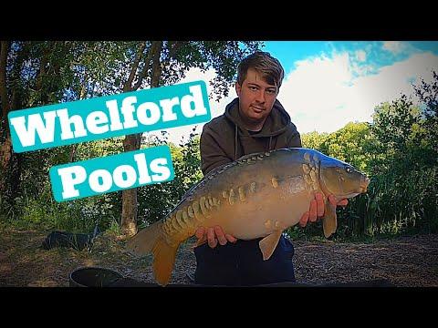 Whelford Pools - 24 Hour Carp Fishing