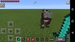 Ea Craft---Minecraft PE Mod Tanıtımları---Kan Modu