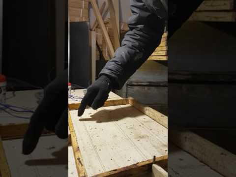 Пчеловодство для начинающих в Подмосковье, обучение