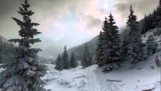 Amorphis ~ Black Winter Day (Lyrics)