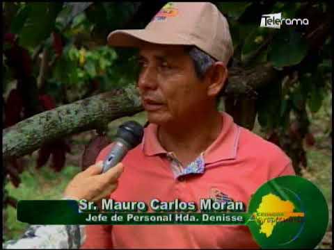 Ecuador Agropecuario 05-07-2018