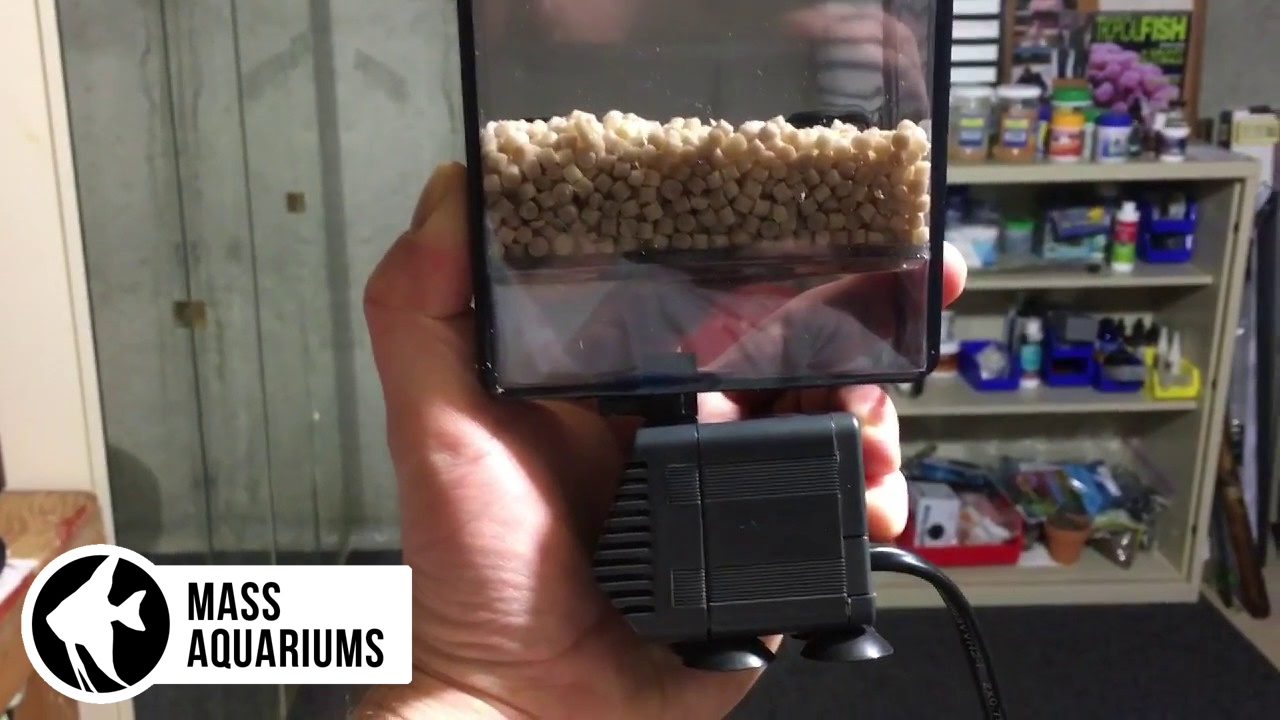 removing phosphates in a saltwater aquarium with dr tims np active