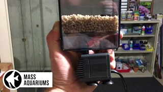 Removing Phosphates in a Saltwater Aquarium with Dr. Tims NP Active Pearls,