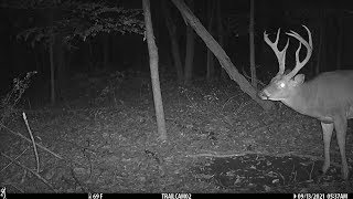 DEER SEASON IS HERE!!! -Ohio early season archery