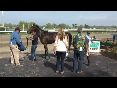 video thumbnail for MONMOUTH PARK  5-4-19 RACE 5