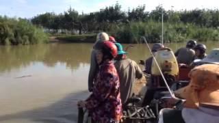 DT Thanhtan Pham