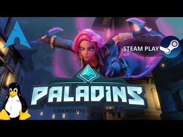 Paladins - Steam Play/Proton-GE   Revisit