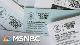 Voting Rights Expert Says Early End To Census Count Could Be 'Disastrous' | The Last Word | MSNBC