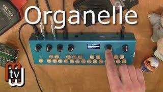 Organelle - звуковой модуль