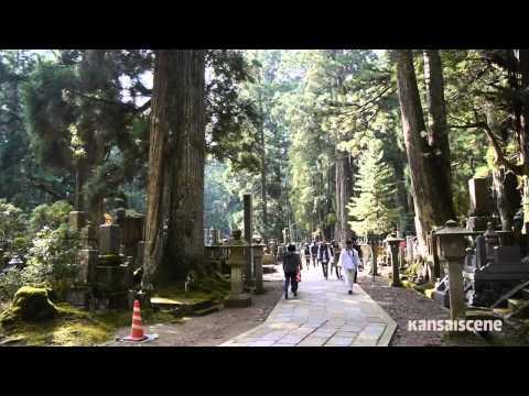 Adventures in Kansai: Journey to Koyasan