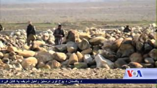 Number of ISIS fighters beheaded in Afghanistan - VOA Ashna