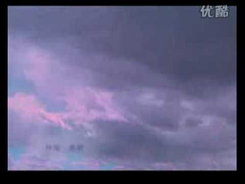 白雪 - 归来 (2008年)