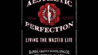 Aesthetic Perfection - Living the wasted life (Deadbeat Machineries Remix)