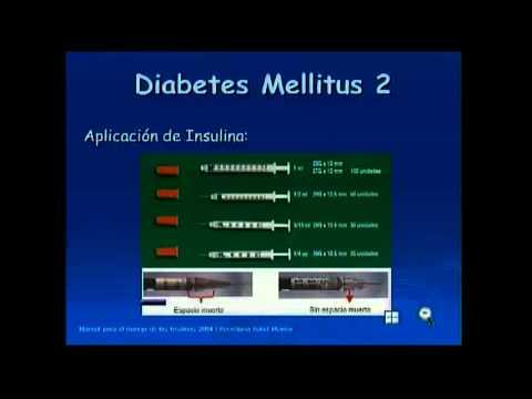 Diabetes Mellitus Tipo 2 y Manejo de la Insulina