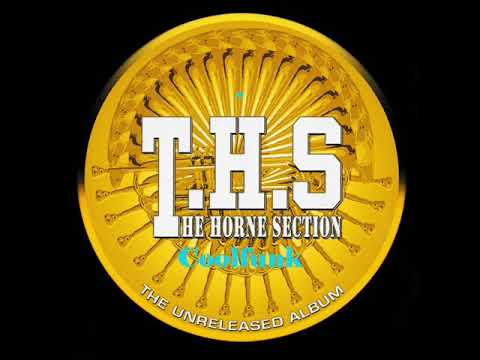 T.H.S.(The Horne Section) - Crazy Bout Your Love (Boogie-Funk)