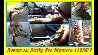 Ловить чи Strike Pro Montero 110SP ?