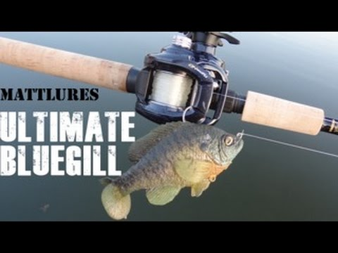 Taxidermy quality bluegill lure - The Mattlures ULTIMATE Gill