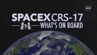Science Experiments SpaceX is Launching to the International Space Station