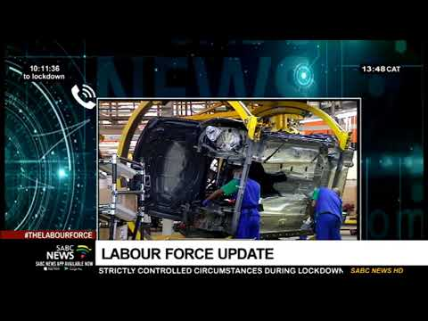 The Labour Force | Employment & Labour