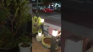 담양무인카페(2)