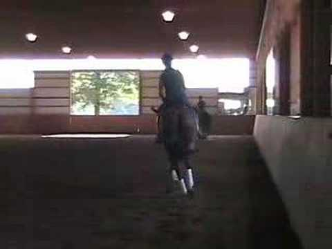Steffen Peters and janet foy clinic