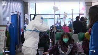 Il coronavirus fa paura - Unomattina 23/01/2020