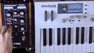 Absolute Music: Moog Moogerfooger Cluster Flux Pedal