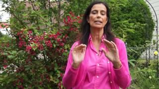 Pink Viagra - Dr. Verena Breitenbach