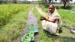 Thankuni Pata Bata Recipe | Grandmother Natural Food Recipes | Healthy Village Food