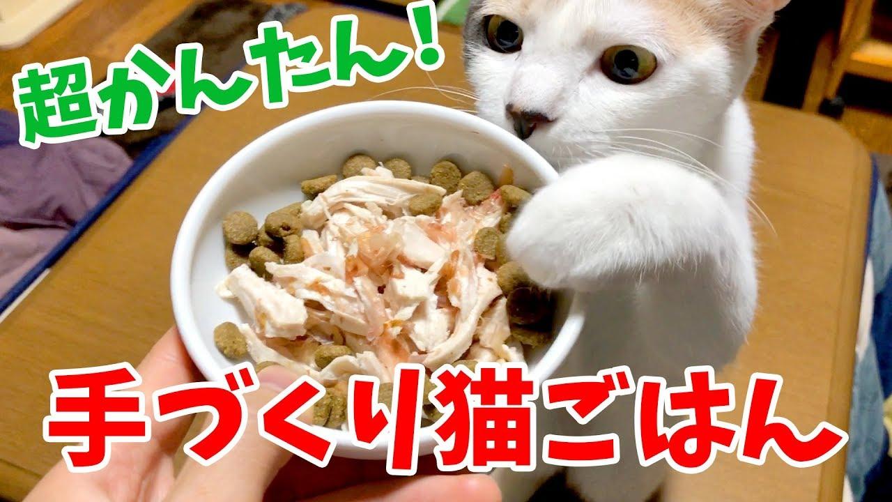 の ごはん 猫 猫 に は 猫