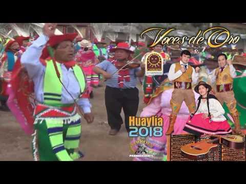 Voces De Oro De Antabamba ► MIX HUAYLIA VITEÑA I ☆PRIMICIA: Huaylia 2018☆ ✓ ♫ ☛ Vídeo Promocional.