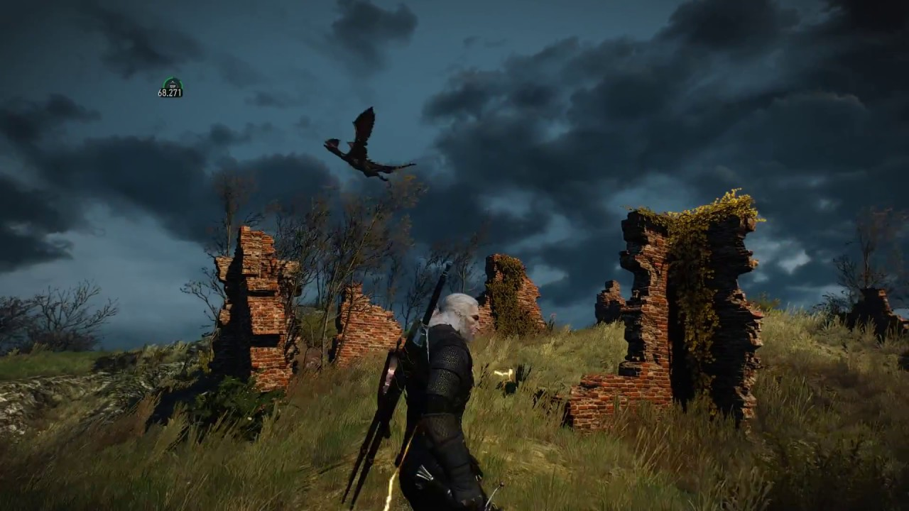 The Witcher 3 Enhanced Edition- fun draconid fight