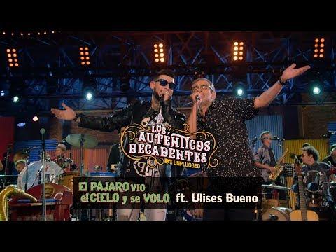 Los Autenticos Decadentes - El Pájaro Vio El Cielo Y Se Voló (Ft. Ulises Bueno) (MTV Unplugged)