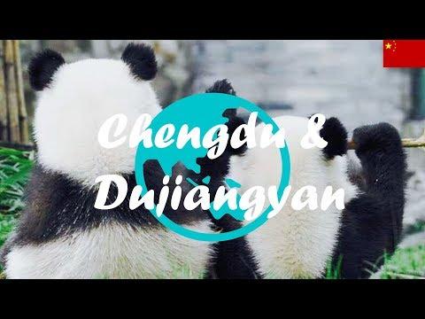 Weltreise Vlog #13: Chengdu & Dujiangyan ∙ Auf zu den Pandas!