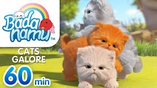 Cats Galore | Badanamu Compilation l Nursery Rhymes & Kids Songs
