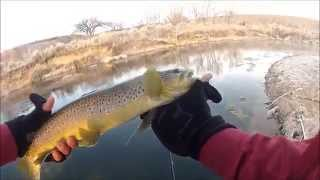 Fly Fishing Utah - The Strawberry River