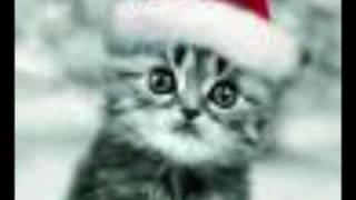 tito el bambino-feliz navidad