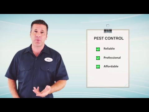 Affordable Pest Control Tri-Cities