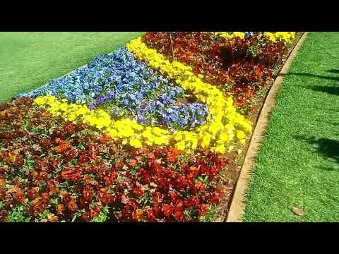 Queens Park Botanic Gardens after Toowoomba Flowers Festival 2018