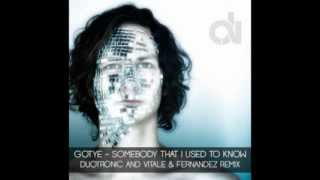 Gotye Somebody That I Used to Know Duotronic and Vitale Fernandez Remix.mp3