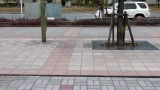 2011.03.11 earthquake urayasu chiba Japan 東北地方太平洋沖地震