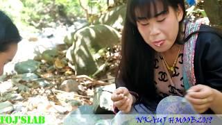 Download Video .Toj Siab Txhom ntses 2019 MP3 3GP MP4