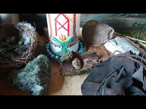 Runenkraft und Wespenstich