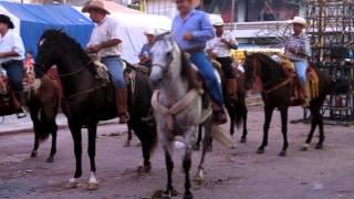 pitillal / jalisco/mexico 2012 010