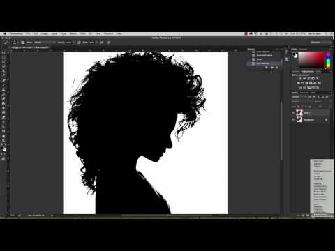 Photoshop Channel Silhouette Process