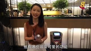 小小机器人改变酒店待客之道 自动化服务提升效率