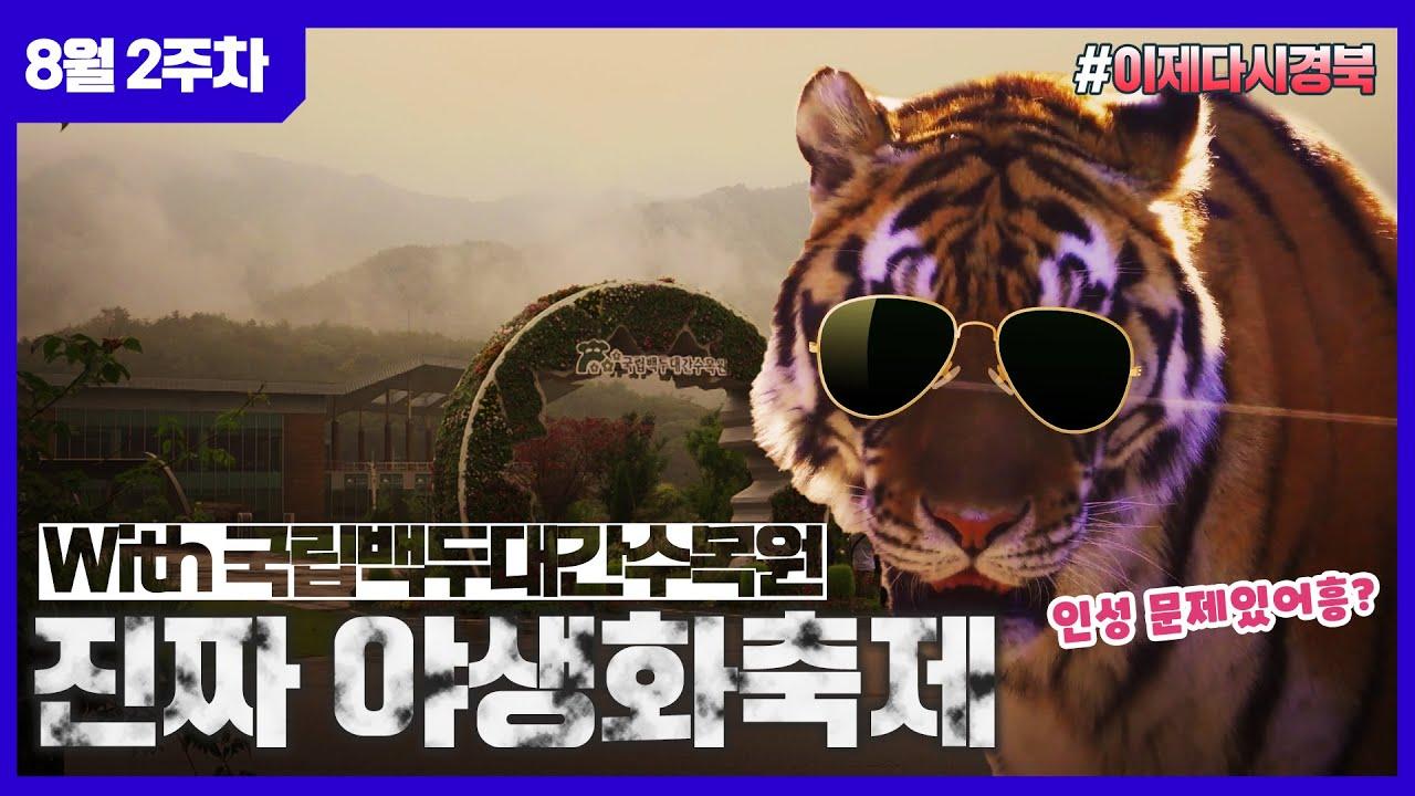 호랑이가 뛰어노는 야생화 숲이 있다?