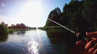 Вечерняя Рыбалка Летом в Забродку на Всплеск 2020