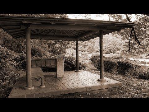 Rain - 秦基博(フル)